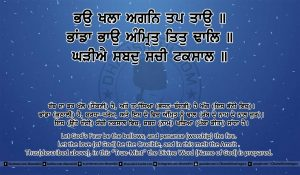 Sri Guru Granth Sahib Ji Arth Ang 8 post 14