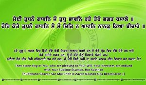 Sri Guru Granth Sahib Ji Arth Ang 9 post 4