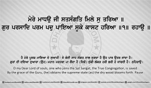 Sri Guru Granth Sahib Ji Arth Ang 10 Post 8