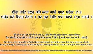 Sri Guru Granth Sahib Ji Arth Ang 13 post 13