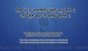 Sri Guru Granth Sahib Ji Arth Ang 11 post 14