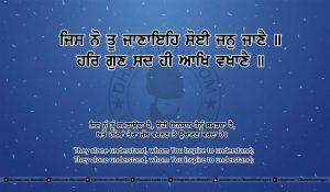 Sri Guru Granth Sahib Ji Arth Ang 11 post 14