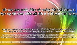 Sri Guru Granth Sahib Ji Arth Ang 13 post 6