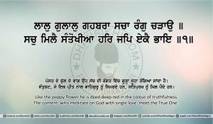 Sri Guru Granth Sahib Ji Arth Ang 18 post 12