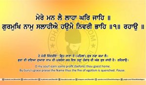 Sri Guru Granth Sahib Ji Arth Ang 20 post 13