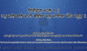Sri Guru Granth Sahib Ji Arth Ang 19 post 14