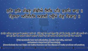 Sri Guru Granth Sahib Ji Arth Ang 20 post 14