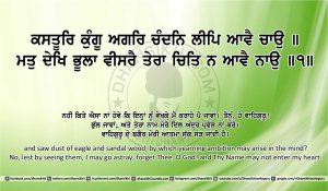 Sri Guru Granth Sahib Ji Arth Ang 14 post 2