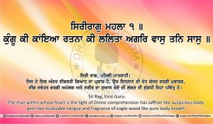Sri Guru Granth Sahib Ji Arth Ang 17 post 3