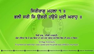 Sri Guru Granth Sahib Ji Arth Ang 18 post 4