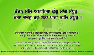 Sri Guru Granth Sahib Ji Arth Ang 19 post 4