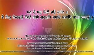 Sri Guru Granth Sahib Ji Arth Ang 18 post 6