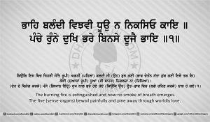 Sri Guru Granth Sahib Ji Arth Ang 19 post 8