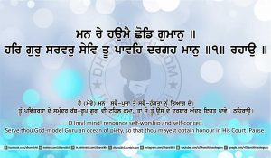 Sri Guru Granth Sahib Ji Arth Ang 21 post 9