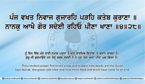 Sri Guru Granth Sahib Ji Arth Ang 24 post 10