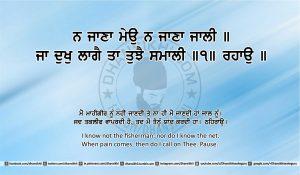 Sri Guru Granth Sahib Ji Arth Ang 25 post 10