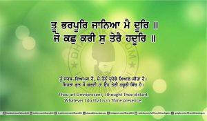 Sri Guru Granth Sahib Ji Arth Ang 25 post 11