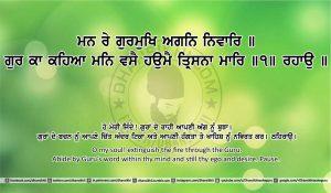 Sri Guru Granth Sahib Ji Arth Ang 22 post 11