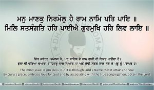 Sri Guru Granth Sahib Ji Arth Ang 22 post 12
