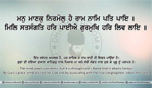 Sri Guru Granth Sahib Ji Arth Ang 22 post 12