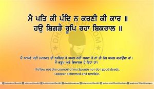 Sri Guru Granth Sahib Ji Arth Ang 24 post 13