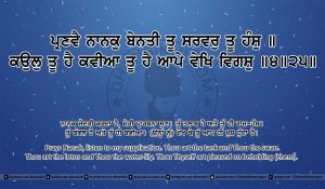 Sri Guru Granth Sahib Ji Arth Ang 23 post 14
