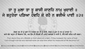 Sri Guru Granth Sahib Ji Arth Ang 24 post 8