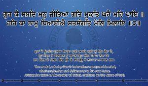 Sri Guru Granth Sahib Ji Arth Ang 26 post 14