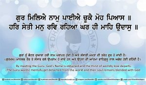 Sri Guru Granth Sahib Ji Arth Ang 26 post 10