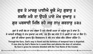 DhanSikhi SGGS ANG33 Post 8 web