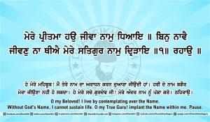 Sri Guru Granth Sahib Ji Arth Ang 40 post 5