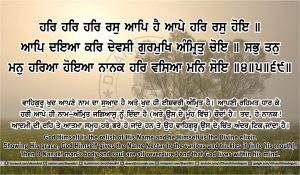 Sri Guru Granth Sahib Ji Arth Ang 41 post 12