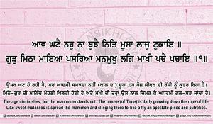 Sri Guru Granth Sahib Ji Arth Ang 41 post 14