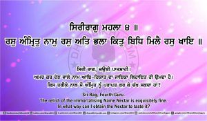 Sri Guru Granth Sahib Ji Arth Ang 41 post 7