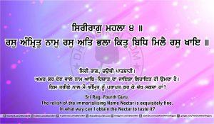 Sri Guru Granth Sahib Ji Arth Ang 41 post 7