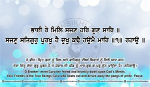 Sri Guru Granth Sahib Ji Arth Ang 41 post 9