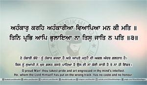 Sri Guru Granth Sahib Ji Arth Ang 42 post 10