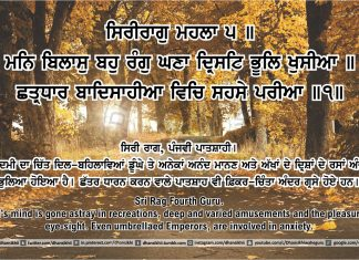 Sri Guru Granth Sahib Ji Arth Ang 42 post 13
