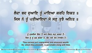 Sri Guru Granth Sahib Ji Arth Ang 42 post 9