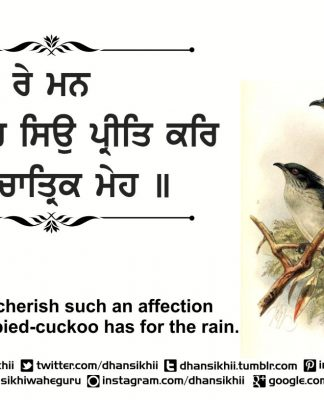 Gurbani Quotes - Re Man Chatrik