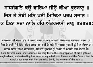 Sri Guru Granth Sahib Ji Arth Ang 43 post 11