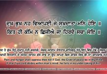 Sri Guru Granth Sahib Ji Arth Ang 43 post 15