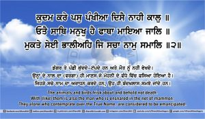 Sri Guru Granth Sahib Ji Arth Ang 43 post 4
