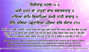 Sri Guru Granth Sahib Ji Arth Ang 43 post 7
