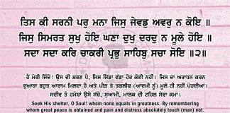 Sri Guru Granth Sahib Ji Arth Ang 44 post 14