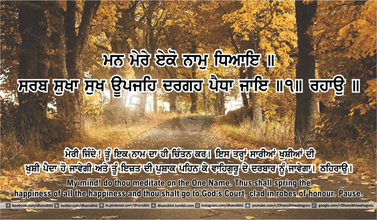 Sri Guru Granth Sahib Ji Arth Ang 45 post 13
