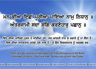 Sri Guru Granth Sahib Ji Arth Ang 46 post 4