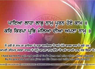 Sri Guru Granth Sahib Ji Arth Ang 46 post 6