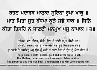 Sri Guru Granth Sahib Ji Arth Ang 47 post 11