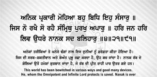 Sri Guru Granth Sahib Ji Arth Ang 50 post 8